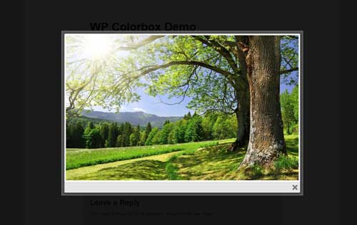 screenshot of image in lightbox using WordPress ColorBox plugin